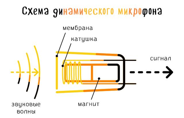 Схема стандартного микрофона