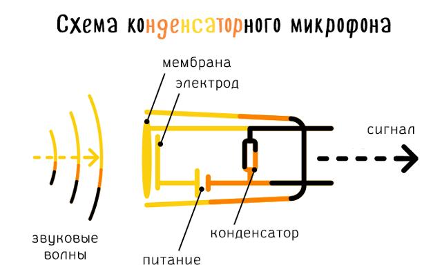 Схема конденсаторного микрофона